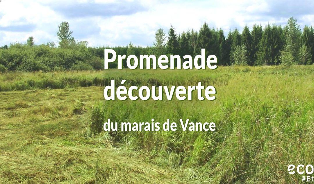 Promenade découverte du marais de Vance le 3 juin